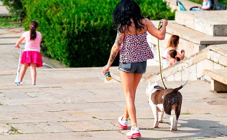 "dog-walking-quiet ""width ="" 770 ""height ="" 477 ""srcset ="" https://soyunperro.com/wp-content/uploads/2015/01/perro-walking-tranquilo.jpg 770w, https: // soyunperro.com/wp-content/uploads/2015/01/perro-paseando-tranquilo-300x186.jpg 300w, https://soyunperro.com/wp-content/uploads/2015/01/perro-paseando-tranquilo-768x476 .jpg 768w, https://soyunperro.com/wp-content/uploads/2015/01/perro-paseando-tranquilo-150x93.jpg 150w, https://soyunperro.com/wp-content/uploads/2015/01 /perro-paseando-tranquilo-696x431.jpg 696w, https://soyunperro.com/wp-content/uploads/2015/01/perro-paseando-tranquilo-678x420.jpg 678w, https://soyunperro.com/wp -content / uploads / 2015/01 / dog-walking-quiet-356x220.jpg 356w ""tailles ="" (largeur maximale: 770px) 100vw, 770px"