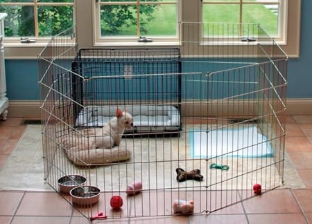 jaula para perros pleglable