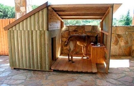 caseta para perro en exterior