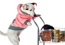 perro comprando comida