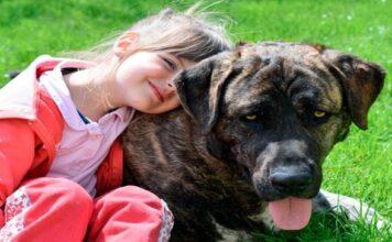 niña abrazando a su perro de terapia