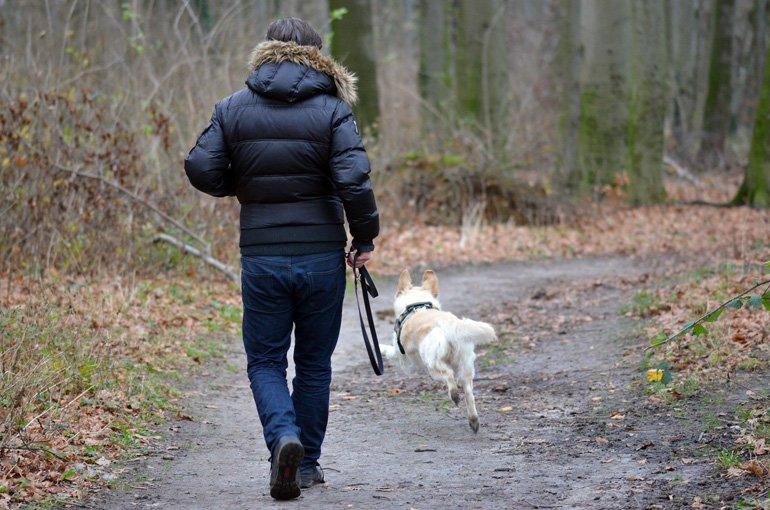 perro-paseando-con-su-dueño