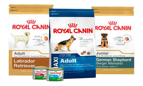 royal-canin-pienso