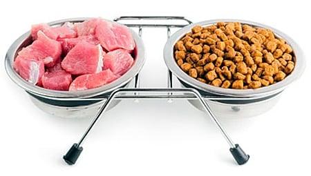 pienso para perro vs carne fresca