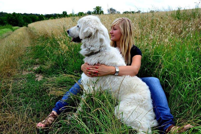 terapia-con-perros