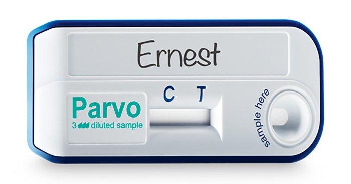 test-parvovirus