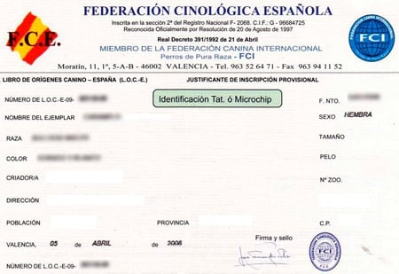 certificado de pedigree
