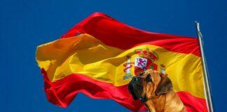 razas-españolas-de-perro