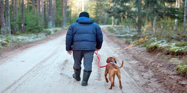 travesia por el monte con perro