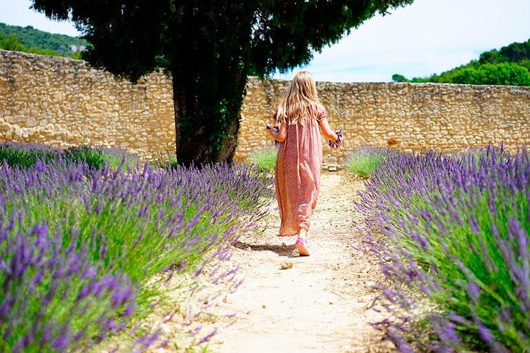 "garden-with-lavender ""width ="" 770 ""height ="" 513 ""srcset ="" https://soyunperro.com/wp-content/uploads/2019/10/jardín-con-lavanda.jpg 770w, https: // soyunperro.com/wp-content/uploads/2019/10/jardín-con-lavanda-300x200.jpg 300w, https://soyunperro.com/wp-content/uploads/2019/10/jardín-con-lavanda-768x512 .jpg 768w, https://soyunperro.com/wp-content/uploads/2019/10/jardín-con-lavanda-696x464.jpg 696w, https://soyunperro.com/wp-content/uploads/2019/10 /jardín-con-lavanda-630x420.jpg 630w ""tailles ="" (largeur maximale: 770 pixels) 100vw, 770 pixels"