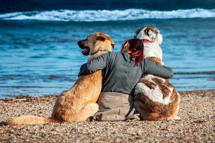 mujer-en-compañia-de-sus-dos-perros-en-la-playa