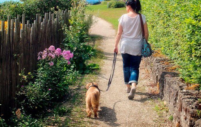 femme-promener-avec-son-chien