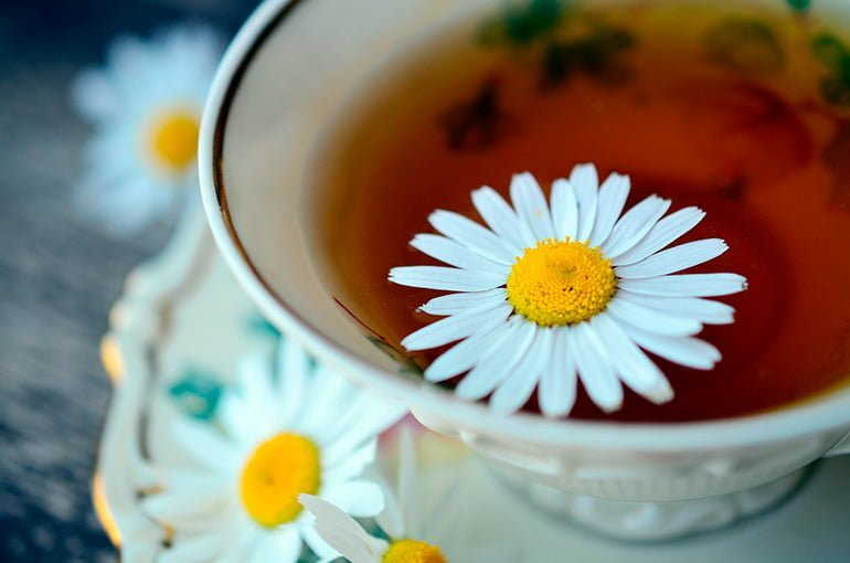 "Chamomile-infusion ""width ="" 770 ""height ="" 510 ""srcset ="" https://soyunperro.com/wp-content/uploads/2019/11/infusión-de-manzanilla.jpg 770w, https: // soyunperro.com/wp-content/uploads/2019/11/infusión-de-manzanilla-300x199.jpg 300w, https://soyunperro.com/wp-content/uploads/2019/11/infusión-de-manzanilla-768x509 .jpg 768w, https://soyunperro.com/wp-content/uploads/2019/11/infusión-de-manzanilla-696x461.jpg 696w, https://soyunperro.com/wp-content/uploads/2019/11 /infusión-de-manzanilla-634x420.jpg 634w ""tailles ="" (largeur maximale: 770px) 100vw, 770px"