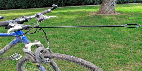Bicicleta adaptada al Bikejoring