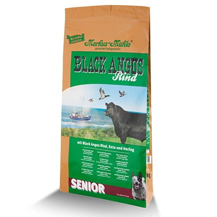 black-angus-senior