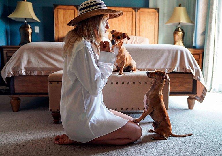 9 jeux à jouer avec votre chien à la maison