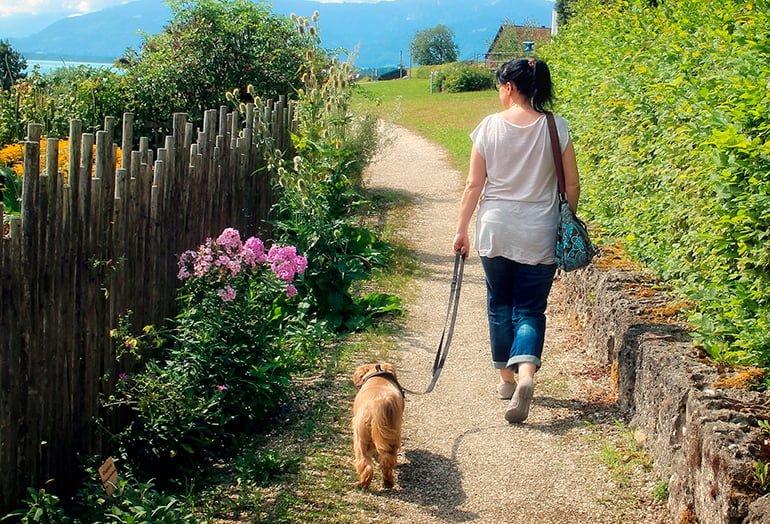 "woman-walking-her-dog ""width ="" 770 ""height ="" 524 ""srcset ="" https://soyunperro.com/wp-content/uploads/2020/03/woman-paseando-a-su-perro .jpg 770w, https://soyunperro.com/wp-content/uploads/2020/03/mujer-paseando-a-su-perro-300x204.jpg 300w, https://soyunperro.com/wp-content/uploads /2020/03/mujer-paseando-a-su-perro-768x523.jpg 768w, https://soyunperro.com/wp-content/uploads/2020/03/mujer-paseando-a-su-perro-696x474. jpg 696w, https://soyunperro.com/wp-content/uploads/2020/03/mujer-paseando-a-su-perro-617x420.jpg 617w ""tailles ="" (largeur max: 770px) 100vw, 770px"