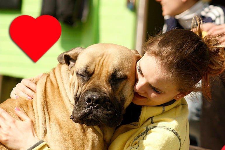 abrazar-a-nuestro-perro-en-casa