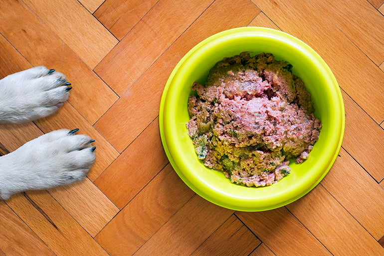 "dog-next-to-your-food-ration ""width ="" 770 ""height ="" 513 ""srcset ="" https://soyunperro.com/wp-content/uploads/2020/07/perro-junto-a -su-ración-de-comida.jpg 770w, https://soyunperro.com/wp-content/uploads/2020/07/perro-junto-a-su-ración-de-comida-300x200.jpg 300w, https : //soyunperro.com/wp-content/uploads/2020/07/perro-junto-a-su-ración-de-comida-768x512.jpg 768w, https://soyunperro.com/wp-content/uploads/ 2020/07 / dog-next-to-your-food-ration-696x464.jpg 696w, https://soyunperro.com/wp-content/uploads/2020/07/perro-junto-a-su-ración -de-comida-630x420.jpg 630w ""tailles ="" (largeur max: 770px) 100vw, 770px"