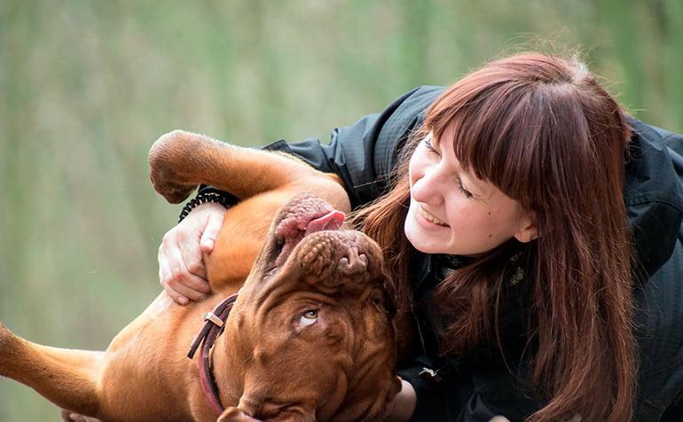 Quels sont les avantages de caresser notre chien?