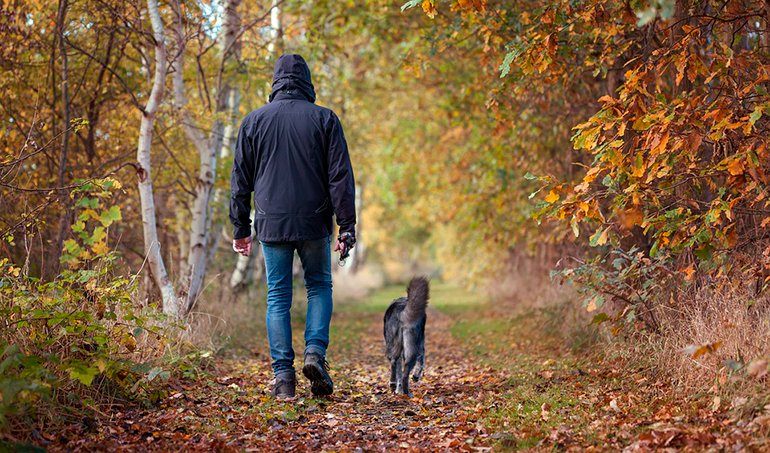 "dog-walking-next-to-your-human-without-leash ""width ="" 770 ""height ="" 453 ""srcset ="" https://soyunperro.com/wp-content/uploads/2020/08/perro-paseando -junto-a-su-humano-sin-correa.jpg 770w, https://soyunperro.com/wp-content/uploads/2020/08/perro-paseando-junto-a-su-humano-sin-correa- 300x176.jpg 300w, https://soyunperro.com/wp-content/uploads/2020/08/perro-paseando-junto-a-su-humano-sin-correa-768x452.jpg 768w, https: // soyunperro. com / wp-content / uploads / 2020/08 / dog-walking-next-to-your-human-without-leash-696x409.jpg 696w, https://soyunperro.com/wp-content/uploads/2020/08 /perro-paseando-junto-a-suhumano-sin-correa-714x420.jpg 714w ""tailles ="" (largeur maximale: 770px) 100vw, 770px"