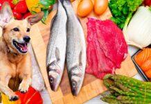 alimentos-para-perros