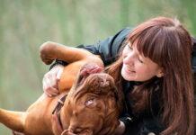 perro-jugando-con-su-humana