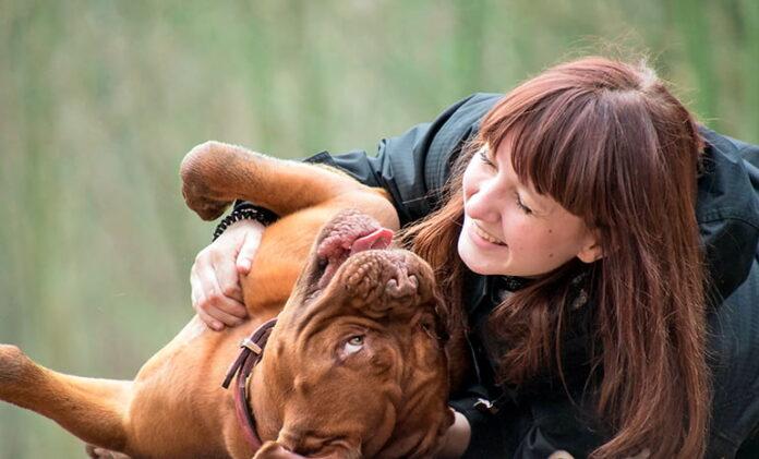 chien-jouant-avec-son-humain