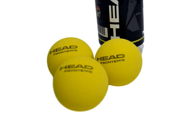 Pourquoi les balles de tennis ne sont-elles pas bonnes pour les chiens?