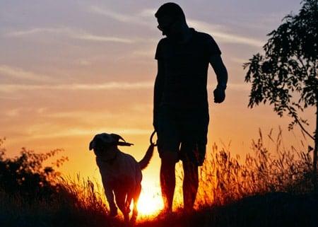 paseando por la montaña con mi perro