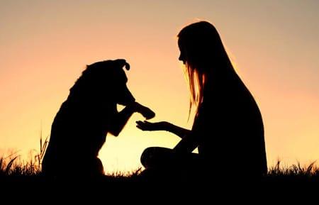 perro con humana