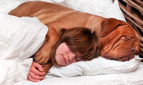 niña durmiendo con su perro grande