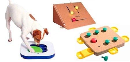 juegos educativos para perro