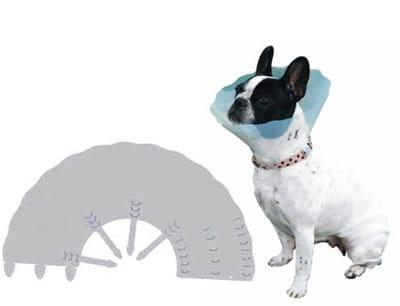 precio para castrar un perro