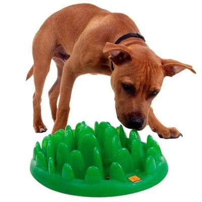 comedero para perros anti-hipo