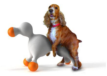 perro montando juguete