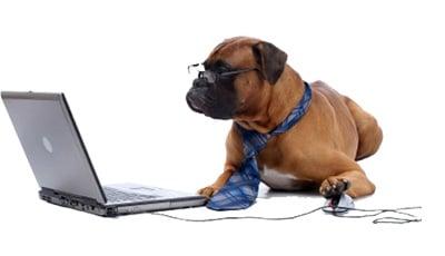 perro haciendo entrevista