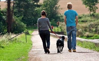 pareja paseando con un perro