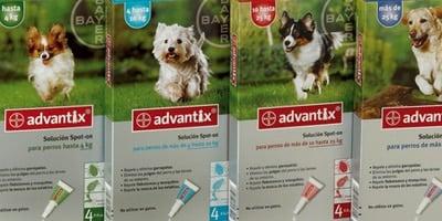 repelente para pulgas en perros